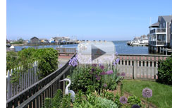 Killen Real Estate - Nantucket Harbor Camera